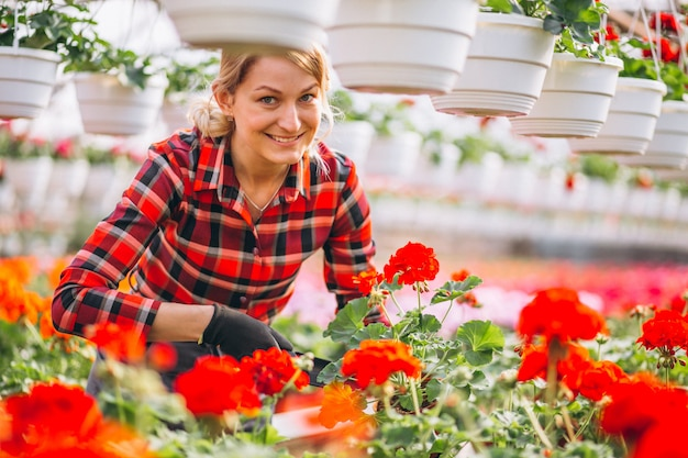 Woman gardner looking after flowers in a greenhouse