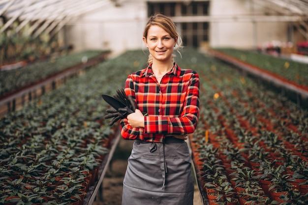 Giardiniere della donna che si occupa delle piante in una serra