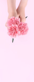 Woman giving bunch carnations isolated on bright pink background,