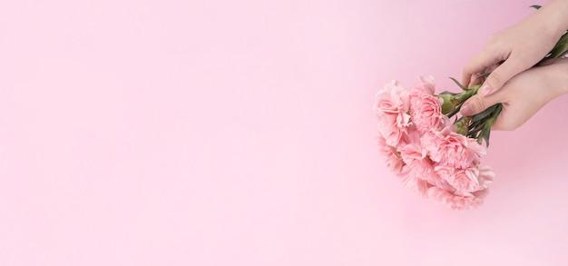 淡いピンクの背景に分離された優雅な咲く赤ちゃんピンク色の柔らかいカーネーションの束を与える女性、母の日の装飾デザインコンセプト、上面図、クローズアップ、コピースペース