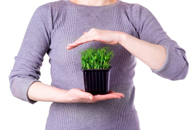 A woman in a gray t-shirt holds micro green polka dots on her hand on a white background