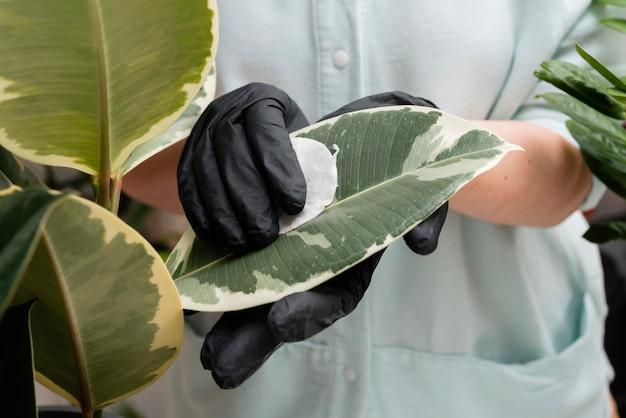 여자 성장 식물을 닫습니다.