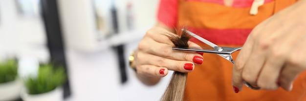 Woman hairdresser holds hair and mills their ends