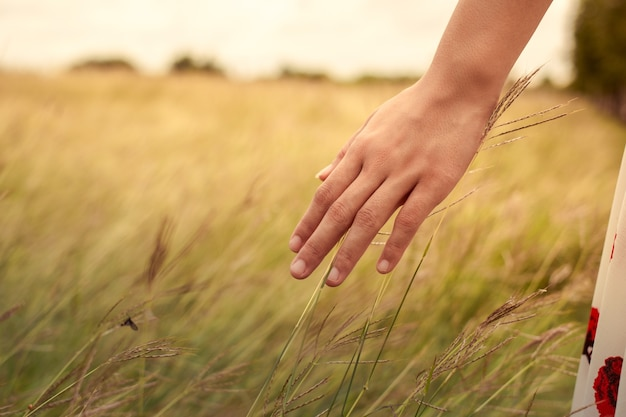 A woman hand feels to the meadows
