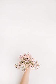 여자 손을 잡고 야생 꽃. 평면 위치, 상위 뷰 봄 배경