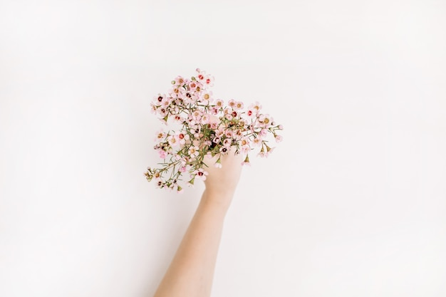 Woman hand hold wild flowers on white background. flat lay, top view