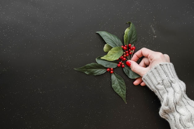 Woman hand holding green twigs of plant with berries