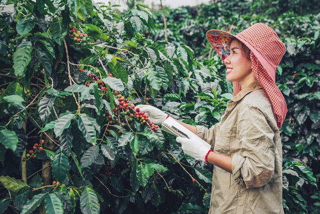 A woman in the hand holding a notebook and standing close to the coffee tree, learning about coffee