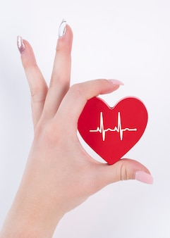 Woman hand holding red heart , heartbeat. health concept