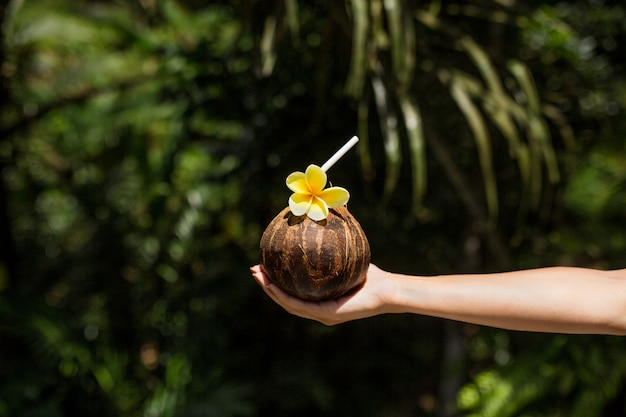 Woman hand holds coconut drink with yellow flower on it