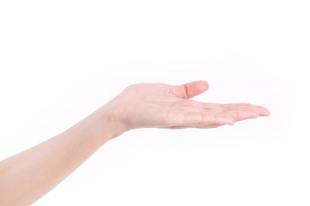 女性の手のひらを上に