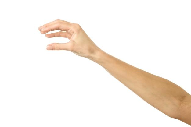 白で隔離の女性の手摘み、保持、つかむ、または到達