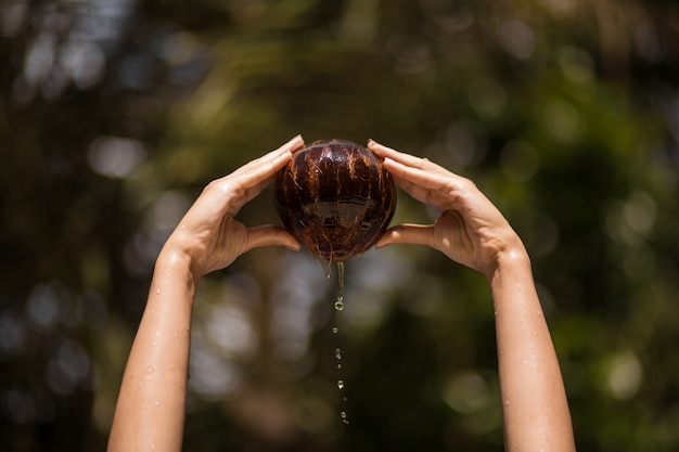 Woman hand pulled out coconut from water. jungle green