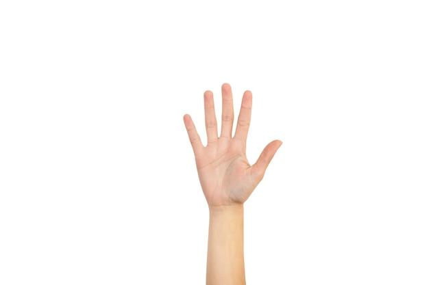 흰색 배경에 그녀의 손바닥과 다섯 손가락을 보여주는 여자 손