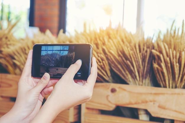 女性の手、携帯電話、若いタイ人の女の子写真を撮る草花乾燥と写真を撮る