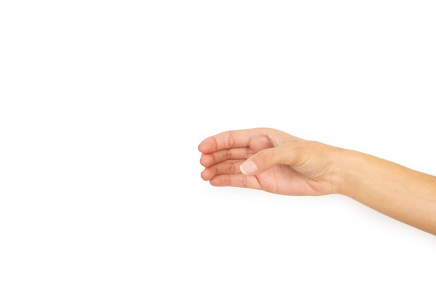 コピースペースで白い背景に何かを保持するようなジェスチャーで女性の手