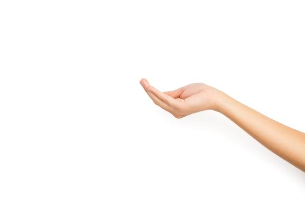 Женская рука с жестом удерживания на белом фоне и с копией пространства