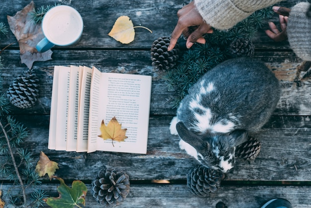 Woman hands decorating a table with a cute bunny pet and book on a wooden table with coffee and pines outdoor