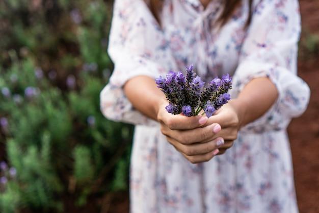여자 손에 신선한 라벤더 꽃으로 가득