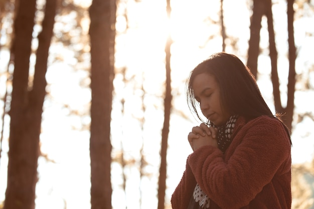 Woman hands folded in prayer in beautiful nature pine tree park