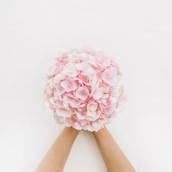 女性の手は白い表面にピンクのアジサイの花の花束を持っています。フラットレイ、上面図