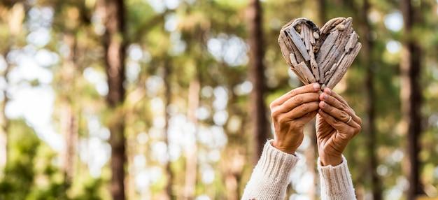 森の木々にハートの形で薪を持っている女性の手、樹皮から作られたハートの形を示す女性。木の樹皮でハートの形のシンボルを作る女性の手