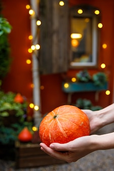 Woman hands holding orange pumpkin, farmers market. halloween party. thanksgiving day