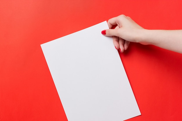 Woman hands holding a white a blank a4 paper on a red background