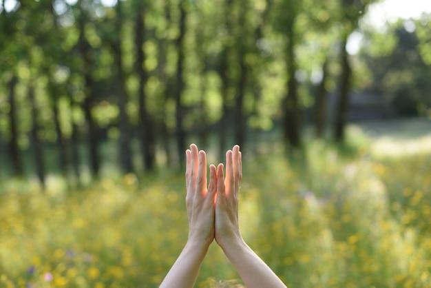 Руки женщины в связи с природой, занимаясь йогой на открытом воздухе