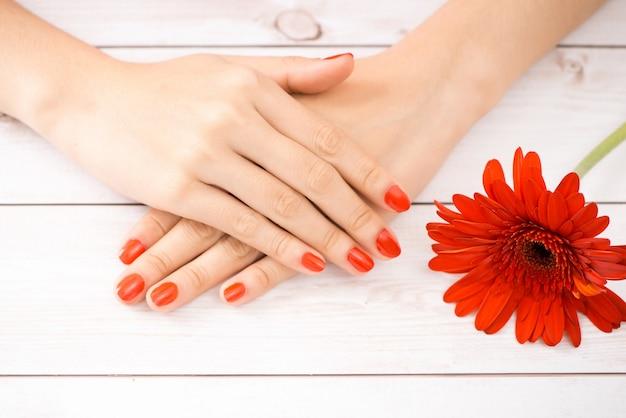女性はマニキュアの赤い爪を手渡します。花に焦点を当てます。
