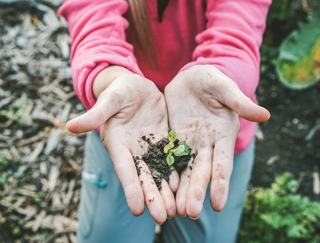 Woman hands planting a seed in backyard home garden