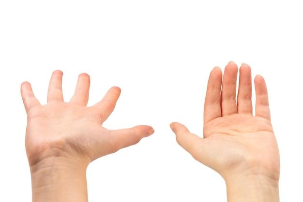 何か、コピースペースを望んでいる、または求めている女性の手