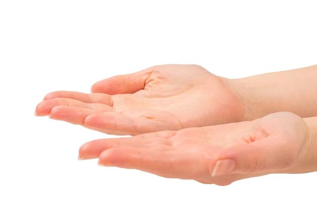 何か、コピースペースを望んでいる、または求めている女性の手。