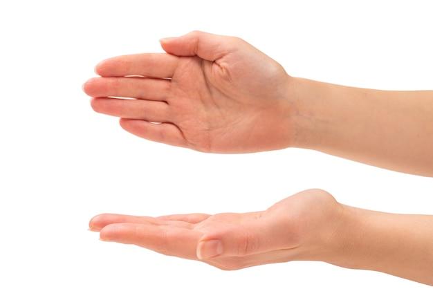 何かを望んでいる、または求めている女性の手
