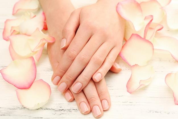 木製の壁に美しいバラの花びらを持つ女性の手、クローズアップ