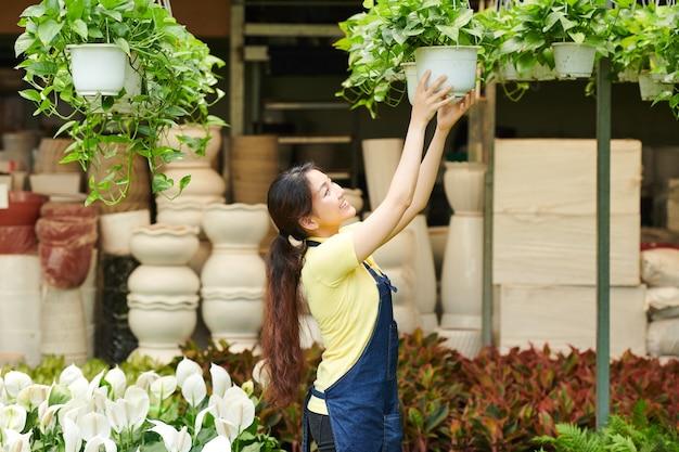 ラックに植物をぶら下げている女性