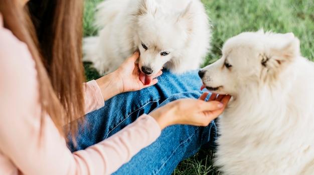 Donna felice di giocare con cani carini