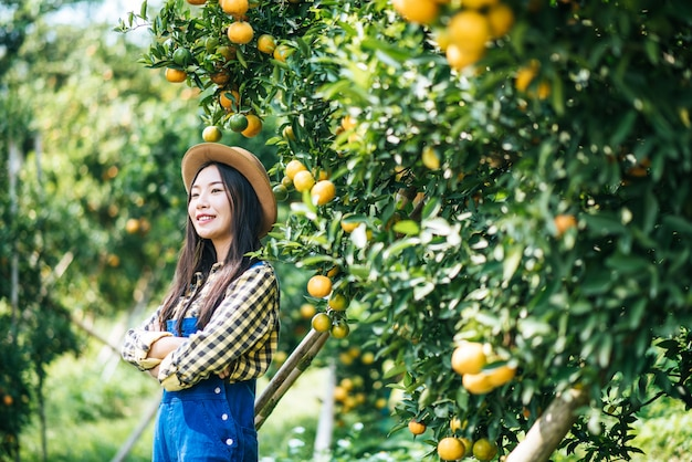 Woman havesting orange plantation