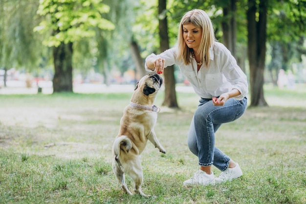 Puppy Training Images | Free Vectors, Stock Photos & PSD