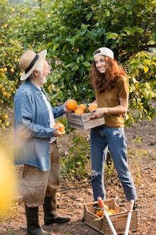 아버지가 정원에있는 나무에서 오렌지를 구하는 것을 돕는 여성