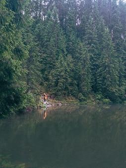 湖のビーチの山の森で黄色のレインコートを着た女性ハイカー
