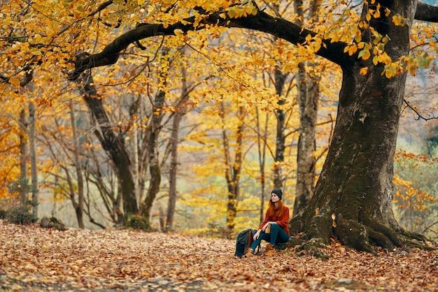 バックパックを持つ女性ハイカーは、秋の森の落ち葉の風景の木の下に座っています