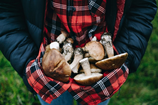 Woman hold fresh picked wild mushrooms