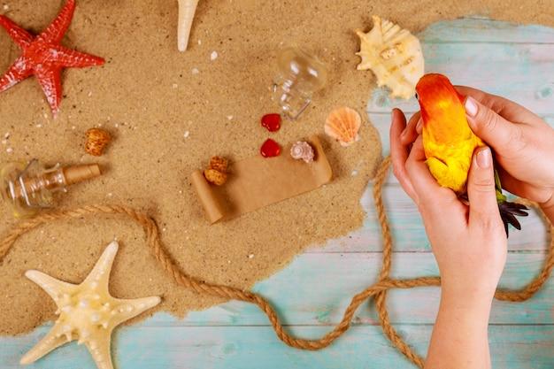 女性はビーチ組成でオウムを保持します。