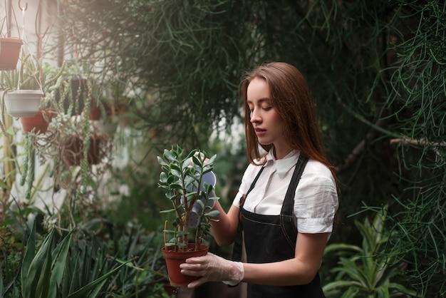 観葉植物の鍋を手で保持している女性