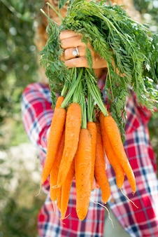 たくさんのオレンジ色の天然にんじんを持って見せている女性-農作業からの純粋な野菜を使った自然と有機バイオ食品の健康的な栄養の概念
