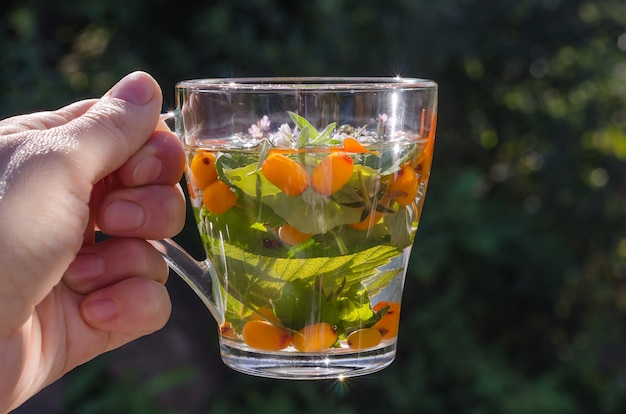 Woman holding a cup of herbal tea with lemon balm and sea buckthorn on nature. healthy lifestyle