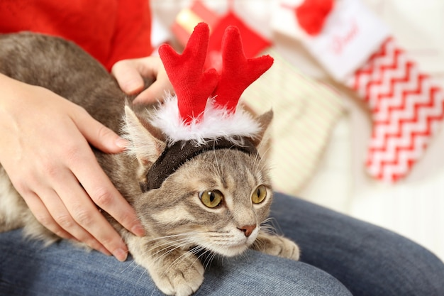 Женщина, держащая милого кота с рогами рождественского оленя