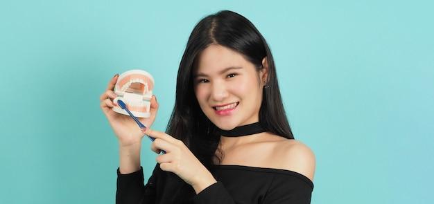 치과 치아 모델 또는 교정 모델을 들고 여자. 구강 관리 개념.