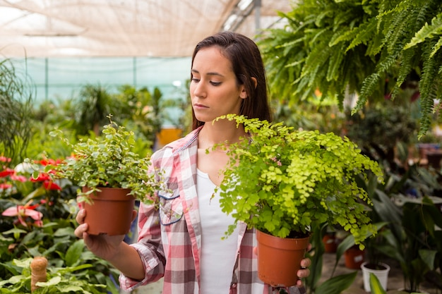 Woman holding flower pots in greenhouse